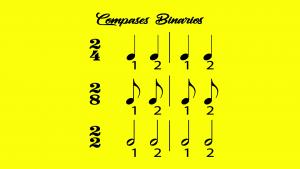 compases simples binarios
